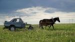 Audi 80 Converted Into Horse Buggy: चरवाहे ने ऑडी की कार को बनाया घोड़ागाड़ी, देखें तस्वीरें
