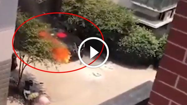 ब्रांड न्यू BMW की पूजा करते समय लगी आग, हुई धुआं-धुआं - देखें विडियो