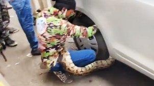 Snake In A Car Causes Massive Traffic Jam: मारुति डिजायर के पहियों से लिपटा सांप, हुआ ट्रैफिक जाम